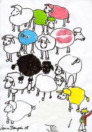 dessin mouton