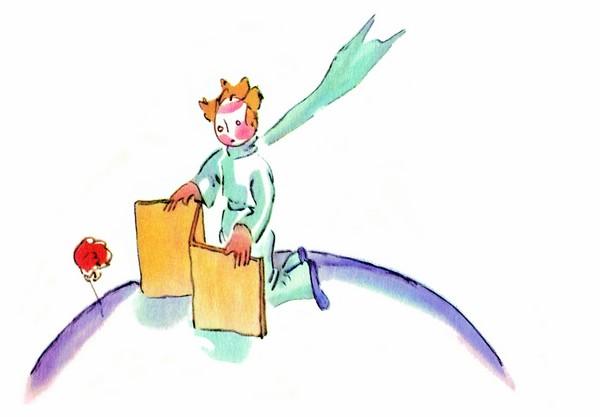 Découvrez les thématiques du Petit Prince